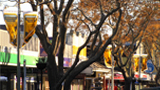 Street photo of Frankton