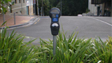 Photo of a Hamilton City parking meter