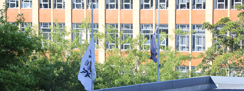 The New Zealand flag and Hamilton City Council flag flying at half-mast.