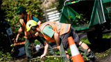 Photo of Council workers clearing vegetation