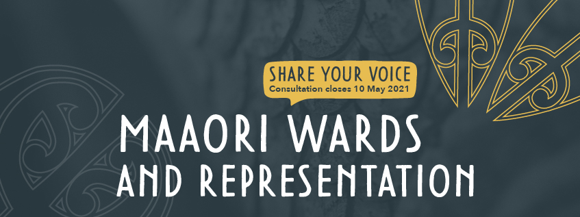 Share Your Voice - Consultation closes 10 May 2021 - Maaori Wards and Representation
