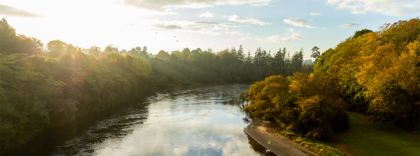 Image of the Waikato River