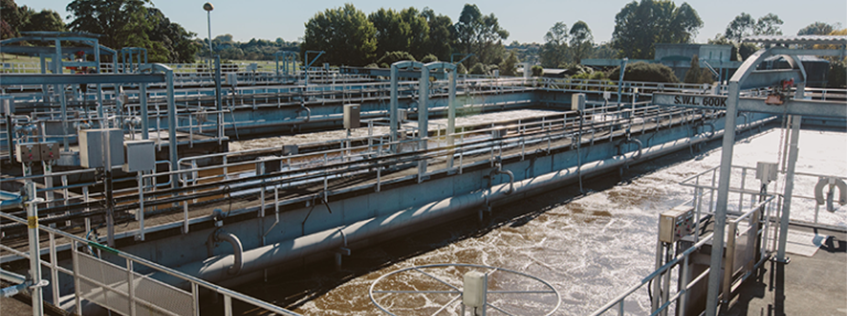 Image of the Pukete Wastewater treatment plant