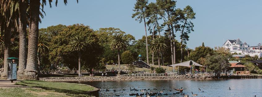 Image at Hamilton Lake