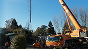 Crane and closure for tree pruning job