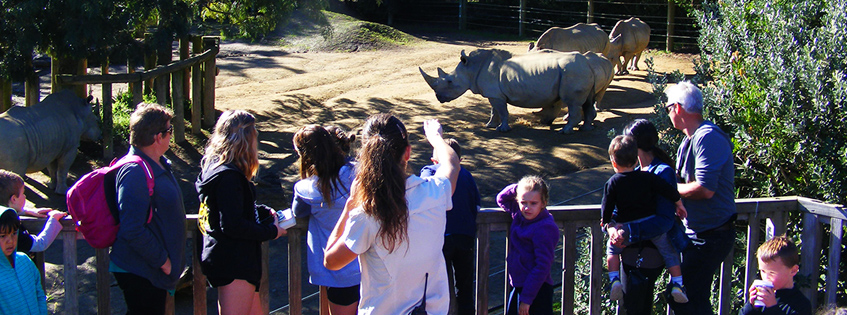 Record year for Hamilton Zoo