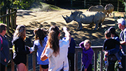 Record year for Hamilton Zoo
