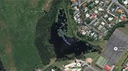 Potentially harmful algae in Lake Rotokaeo