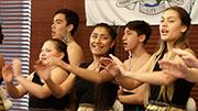 Waitangi Day celebrations in Hamilton